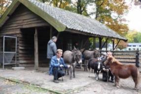 Kinderboerderij Velp