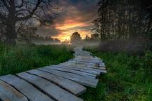 Lezing Natuur- en Landschapsfotografie
